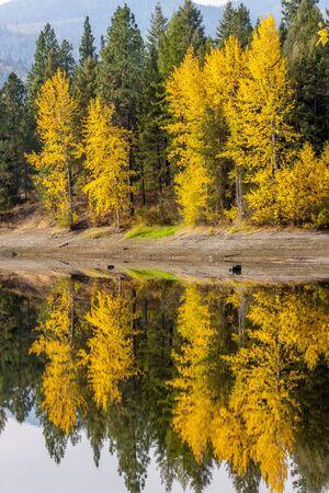 MIrror image of fall colors near Blanchard, Idaho. Stock Photo