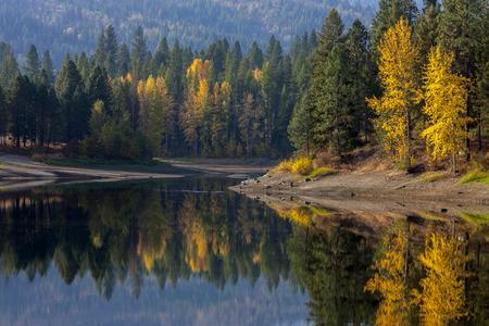 Reflections of trees in autumn near Blanchard, Idaho.