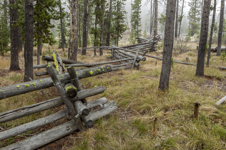stanley: Wood fence within trees Stanley Lake in Idaho. Stock Photo