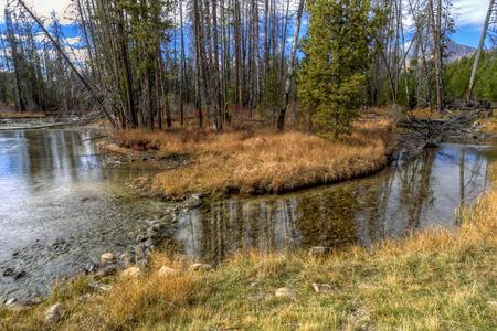 redfish: Clear Redfish Creek near Stanley, Idaho. Stock Photo