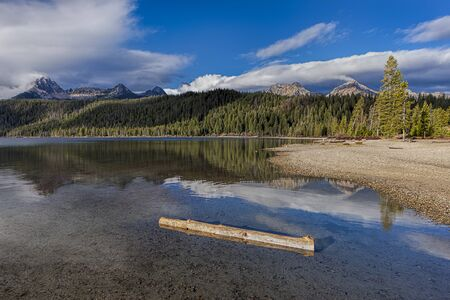 redfish: Log in the water of Redfish Lake near Stanley, Idaho on a sunny day. Stock Photo