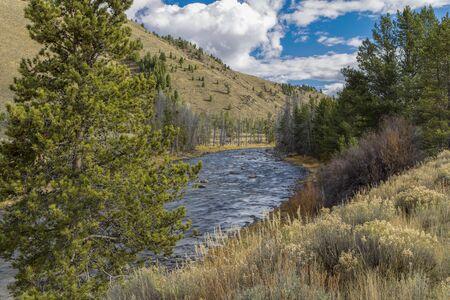 stanley: The grassy banks along the Salmon River near Stanley, Idaho. Stock Photo