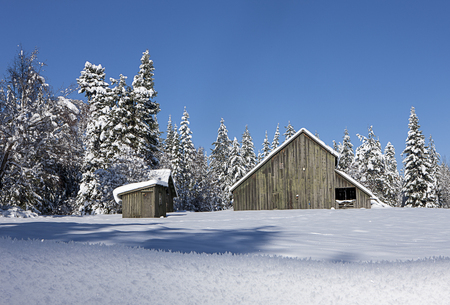 Looking back at snow covered barn north of Hayden, Idaho. Stok Fotoğraf