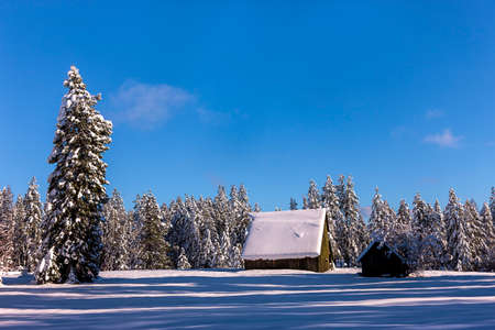 hayden: Rural winter scenic north of Hayden, Idaho. Stock Photo