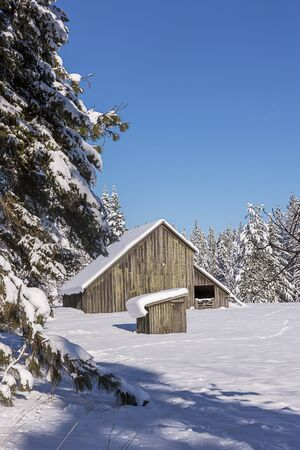 old barn in winter: Winter in rural Idaho. Stock Photo