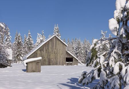 idaho: Rural winter scenic in north Idaho north of Hayden, Idaho. Stock Photo