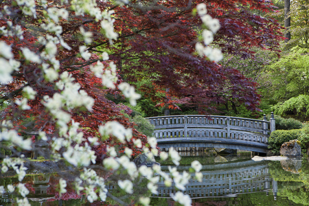japanese gardens: Stone bridge behind the foliage in the Japanese Gardens in Manito Park.