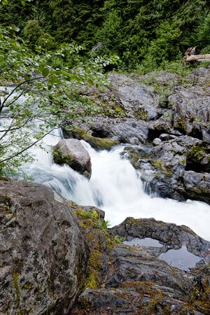 sol duc river: Along the Sold Duc cascades in Washington.