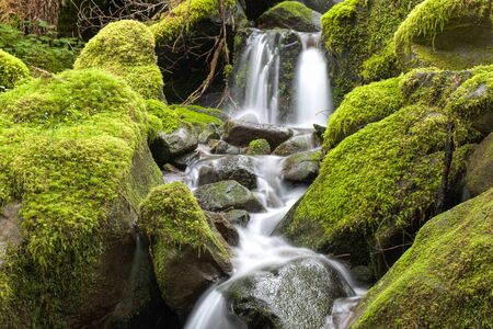 sol duc river: Close up of small waterfall and mossy rocks in Washington.