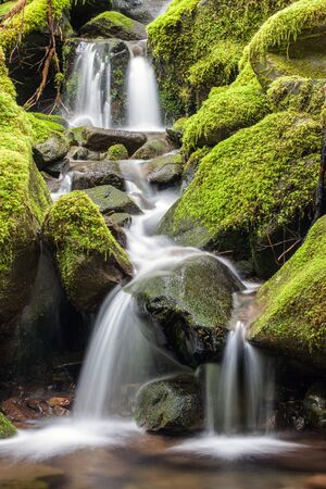 sol duc river: Small falls in the mountains in Washington.