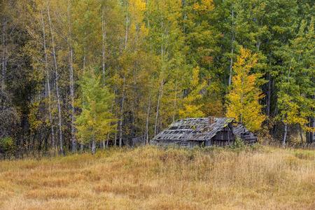 idaho: Autumn in the country in north Idaho. Stock Photo