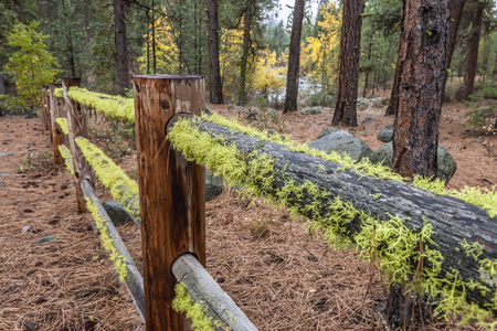 Moss covered wooden fence down to the Chewuch River near Winthrop, Washington. Stock Photo