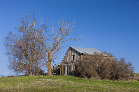 An old run down barn in early spring in Eastern Washington.