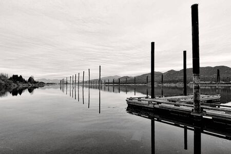A B&W image of tall wooden pilings lineup along the calm Pend Oreille River at Cusick, Washington.