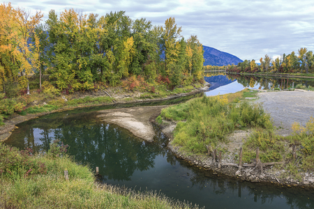 Pretty fall colors along the Kootenai River near Bonners Ferry, Idaho.
