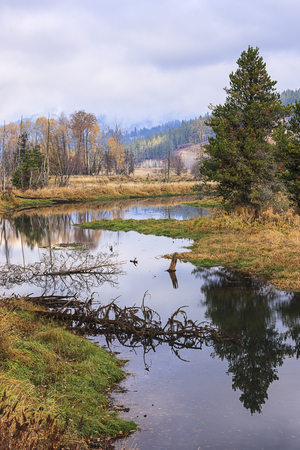 A calm river in the valley near Cataldo, Idaho.