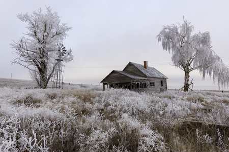An abandoned rural homestead in winter with frost on the ground near Davenport, Washington. Standard-Bild