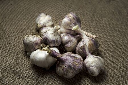 A bunch of garlic bulbs are displayed on old burlap. Imagens