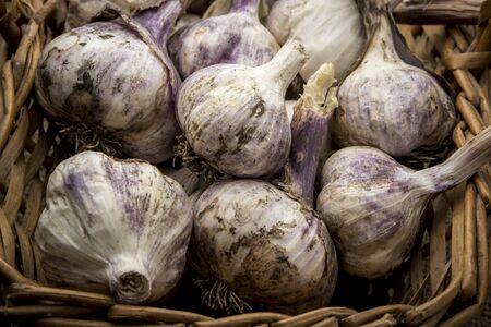 A close up of fresh garlic bulbs in a wicker basket.