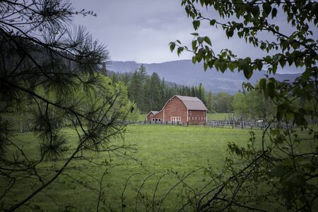 Seeing the red barn through the tree branches in north Idaho. Archivio Fotografico