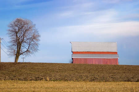 Red Barn and Tree on Winter Farmland Stock Photo - 366006