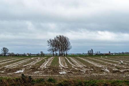 Rural landscape in West Flanders, Belgium near Beveringe and Stavele