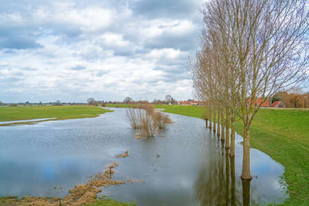 Drowned land along the river Lek, Netherlands