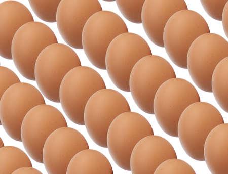brown eggs: Rows of Brown Eggs