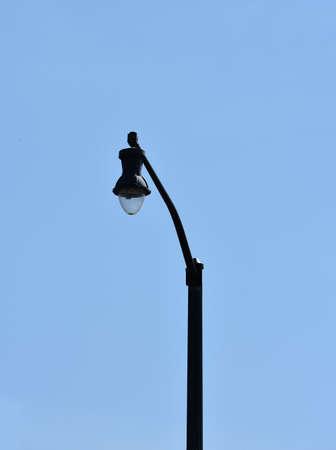 outdoor street light fixture