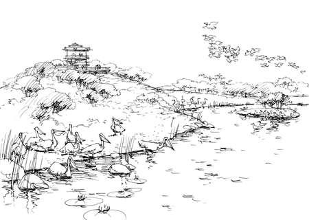 rivulet: birds on the lake