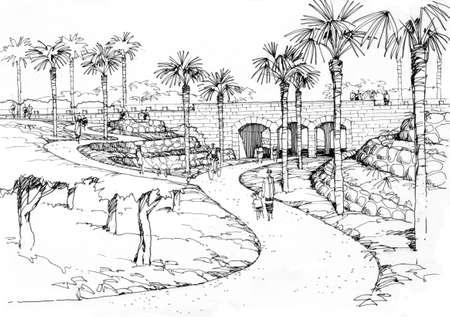 rivulet: palm alley