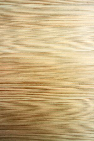 bright texture of wood, horizontal lines photo