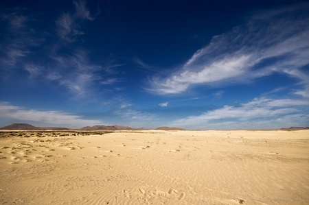 desert landscape, dunes, mountains in the background