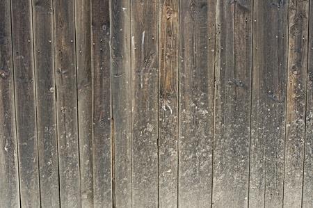 Old wooden plank  barn doors , wood texture