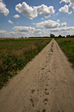 countryside road through fields