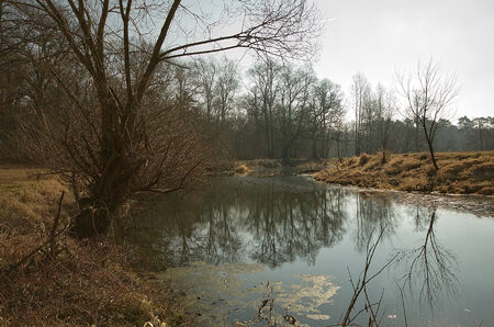 oxbow: bend of the river, the sky reflecting in the water