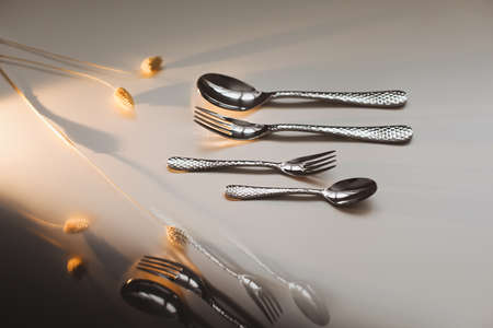 silver stainless cutlery on a light background Stock fotó