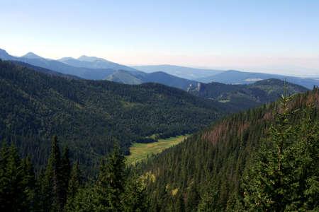 lea: lea in Tatras,Poland Stock Photo