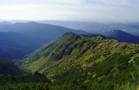 lea: lea in mountains,Poland,Tatras