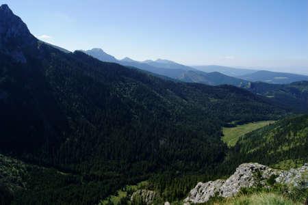 lea: lea in Tatras, Poland Stock Photo