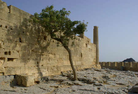 lindos: old temple and tree, Greece,Rhodes,Lindos