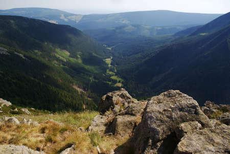 lea: lea in Giant Mountains, Poland