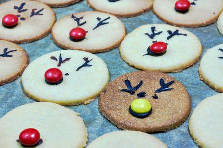 rudolf: Rudolf Cookies for Christmas Stock Photo