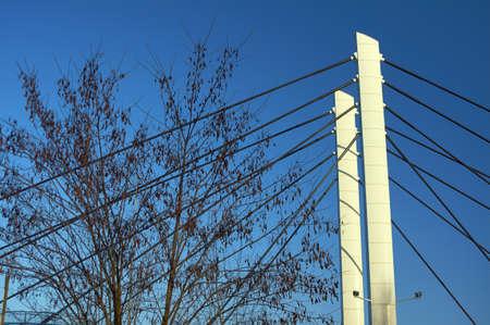 torres de alta tension: Ramas atirantados pilones del puente y árboles en Poznan
