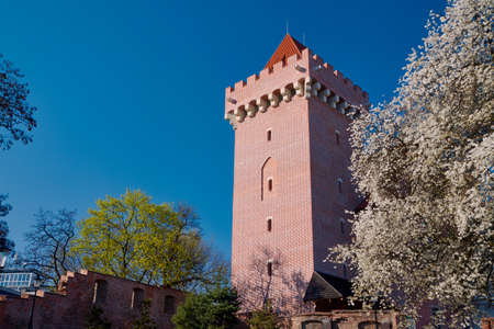 The tower of the royal castle in Poznan spring