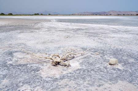 greece shoreline: - Salt on the bottom of the Salt Lake Alykes on the island of Kos in Greece