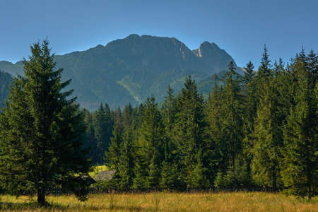 giewont: View from the town of Zakopane the mountain Giewont in Poland