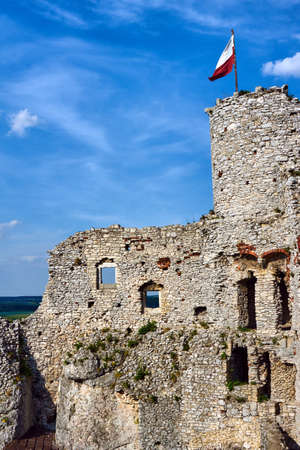 ogrodzieniec: Ruined medieval castle with tower in Ogrodzieniec in Poland