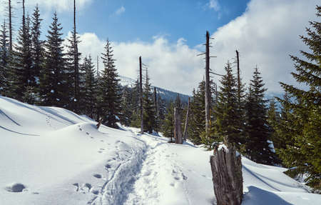 Snow-covered tourist trail in the Giant Mountains in Poland