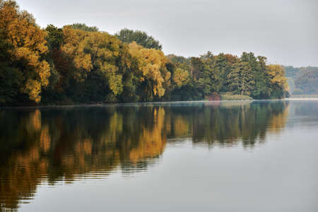 A deciduous forest by the lake during autumn in Poland